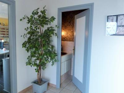 LONS LE SAUNIER 39000 JURA Vend grande MAISON INDEPENDANTE 2 appartements idéale PROFESSIONNEL., Plain-pied: entrée et espace toilettes (lavabo et WC)