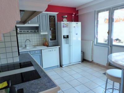 LONS LE SAUNIER 39000 JURA Vend grande MAISON INDEPENDANTE 2 appartements idéale PROFESSIONNEL., Plain-pied: cuisine équipée ouvrant sur terrasse