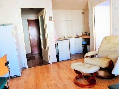 LES ROUSSES 39220 JURA à vendre APPARTEMENT 34.91m²- 1 chambre- dans copropriété bien située., Pièce de vie avec espace kitchinette l