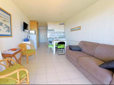 Théoule sur Mer (Alpes Maritimes), à vendre appartement vue mer, terrasse, grand garage box, séjour