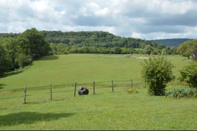 Jura, Région des lacs. Rare ! Propriété équestre 4 ha site idyllique, proche lac de Vouglans., Vue à partir de la maison