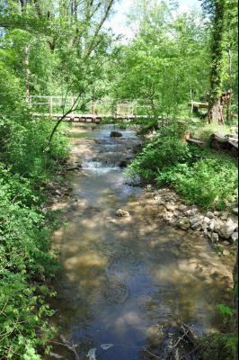 Jura, Région des lacs. Rare ! Propriété équestre 4 ha site idyllique, proche lac de Vouglans., Le ruisseau et pont privé