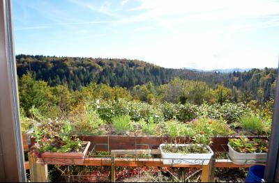 Jura, Région des lacs. Un beau Chalet 175 m², avec une superbe vue, un spa et chalet locatif 35 m²., vue sur la vallée