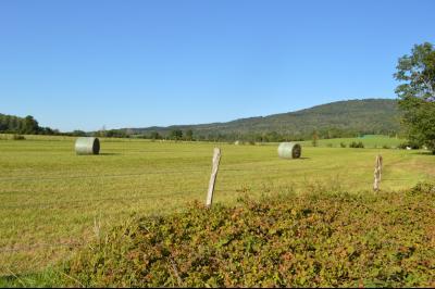 Proche Arinthod, dans un petit village, a vendre une jolie parcelle de terrain plat de 1 000 m²., Piste cyclable