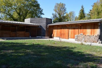 Jura, Proche Lac de Vouglans, à vendre Belle propriété rénovée 8 chambres sur 2,5 ha avec écuries., Écuries et bâtiment agricole