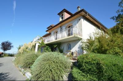 Clairvaux les lacs (39 JURA), à vendre maison rénovée 340 m², parc de 2700 m² avec vue sur le lac, Terrasse arrière