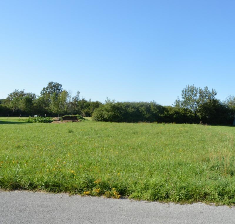 Proche Arinthod, dans un petit village, a vendre une jolie parcelle de terrain plat de 1 000 m�.