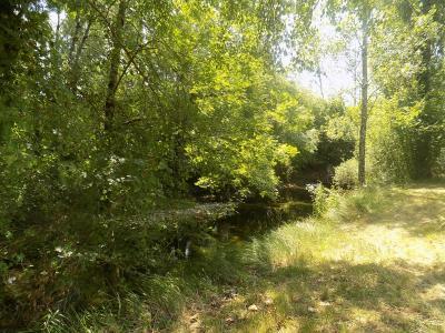 Proche ruisseau, charme et cachet pour ces 2 maisons en pierres sur 4000 m� de terrain