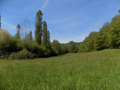 Sur plus de 6 hectares avec �tang, corps de ferme compos� d