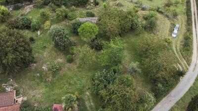 En campagne, au calme, maison de 90 m� sur 2729 m� arbor�